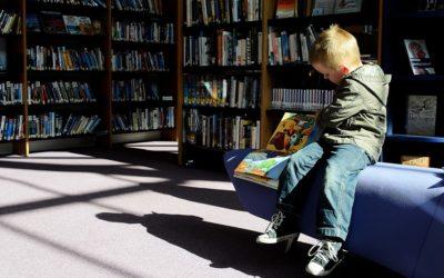 Knihovna v Krnově obnovuje provoz, bude v omezeném režimu