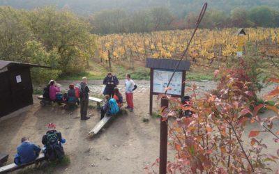Podzim v národním parku Podyjí