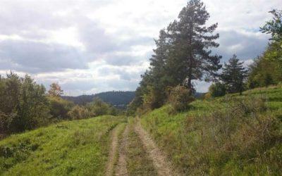 Neznámý známý Kabátův kopec je nové výletní místo nejenom Krnovanů