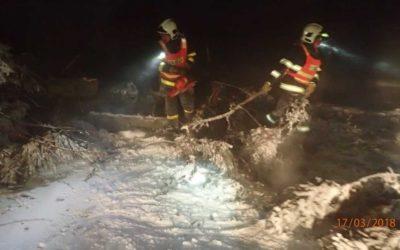 Silný vítr zaměstnal hasiče, odklízeli spadlé stromy