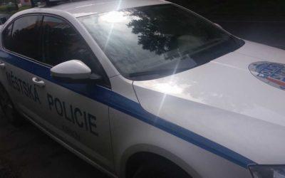 Krnov: Pálením zelených větví obtěžoval sousedy, zavolali na něj strážníky