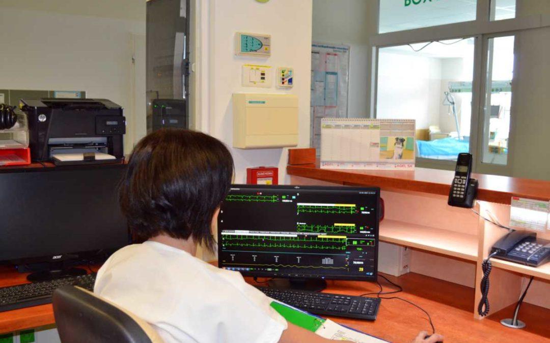 Pacienty v Podhorské nemocnici v Bruntále hlídají nové monitory