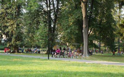 V Bruntále chystají údržbu stromů v parku