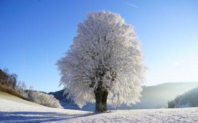 Zájem turistů o Moravskoslezský kraj roste i v zimě