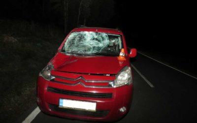 Řidičku Citroenu překvapil na silnici jelen
