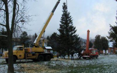 Vrbno pod Pradědem už má svůj vánoční strom
