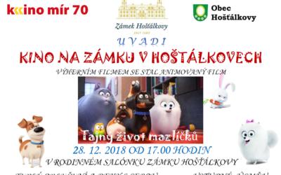 Salónek Hošťálkovského zámku se promění v kino