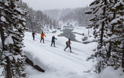 Zimní dovolená v zahraničí se může prodražit