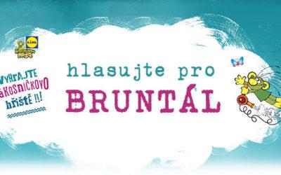 Hlasujte pro nové dětské hřiště v Bruntále