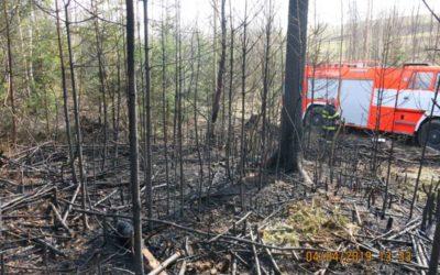 Do Jamartic na Rýmařovsku vyjely čtyři jednotky hasičů, hořel tam smrkový les