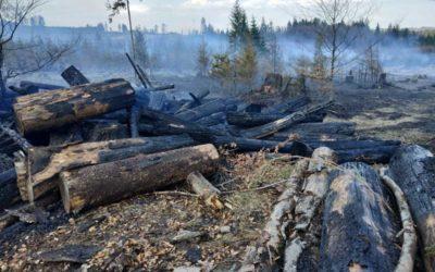 Na Rýmařovsku hořelo 5 hektarů lesního porostu