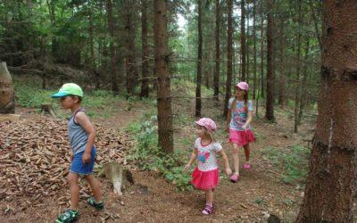 Naučná stezka děti provede pohádkovým lesem až ke Krtečkově studánce