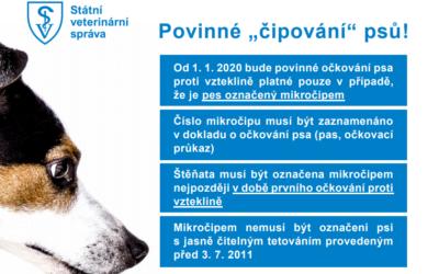 SVS připomíná chovatelům povinnost nechat čipovat své psy do konce roku