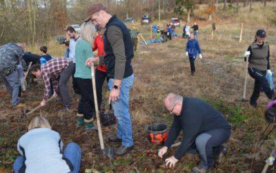 Zaměstnanci a přátelé Krnovské nemocnice vysadili o státním svátku les
