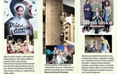 Přelet nad kukaččím hnízdem – slavný titul na divadelních prknech v Bruntále