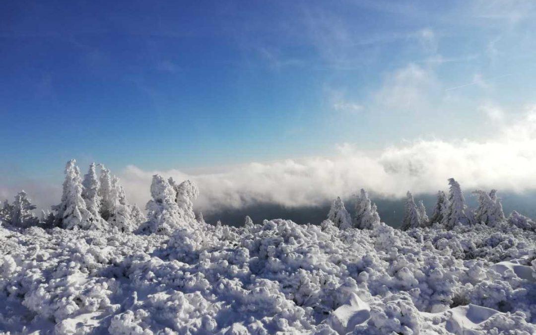 Podívejte se na zasněženou stezku na nejvyšší horu Jeseníků – Praděd
