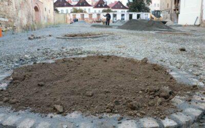 Část areálu bývalé Karnoly se zazelená